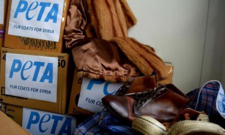 PETA планирует отправить шубы для сирийских беженцев, что вызывает значительные споры