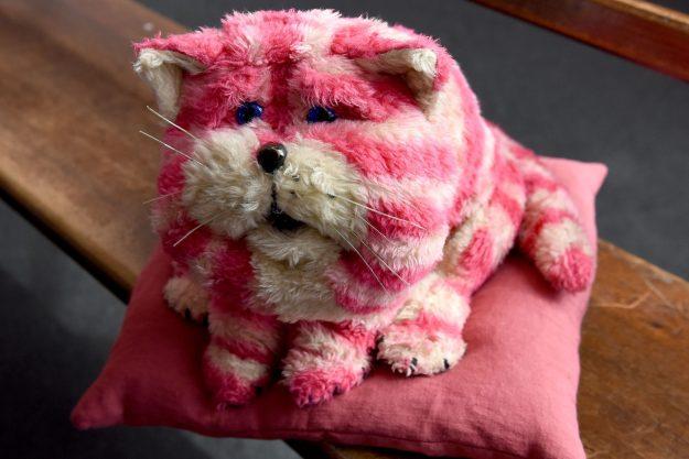 Британцы сравнили певицу с розовым котиком Bagpuss