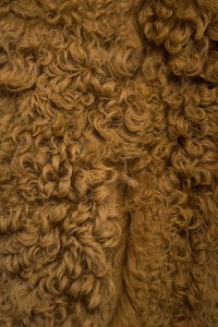 Жилет Vlasta Kopylova овчина RICCIA-K. Фото 4