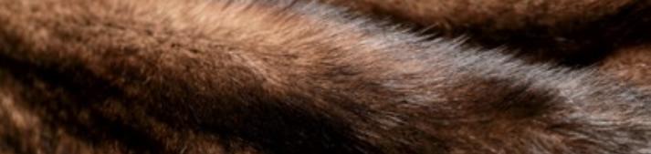 Меха NAFA - мех дикого бобра, норки, лисы