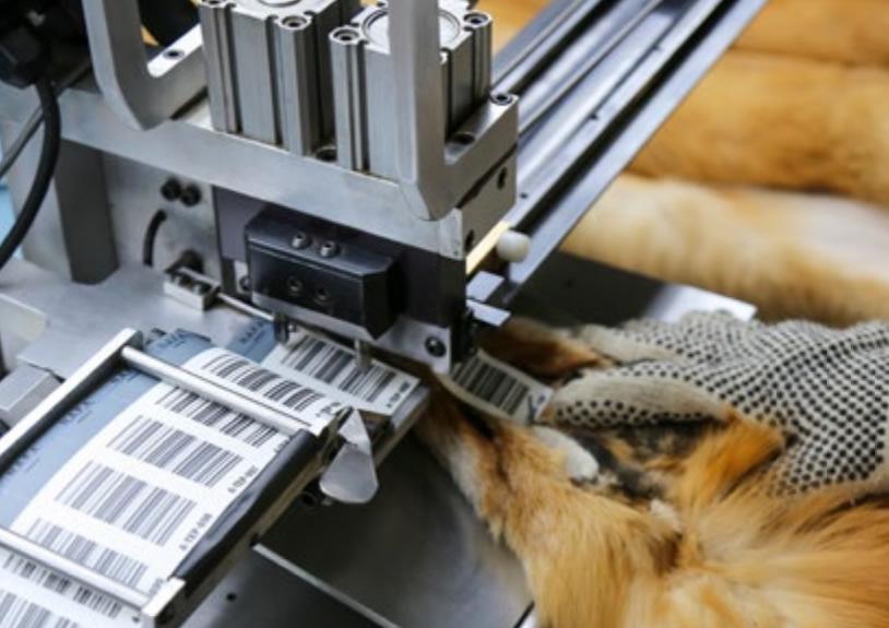 Пошив шуб и других меховых изделий из дикого меха NAFA