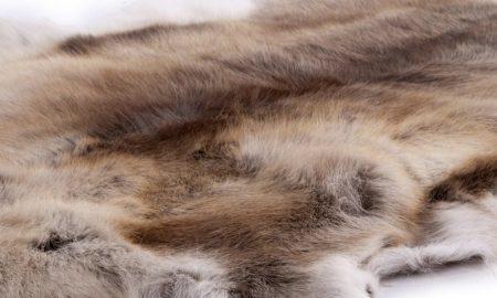 Мех северного оленя признан экспертами эталонным материалом